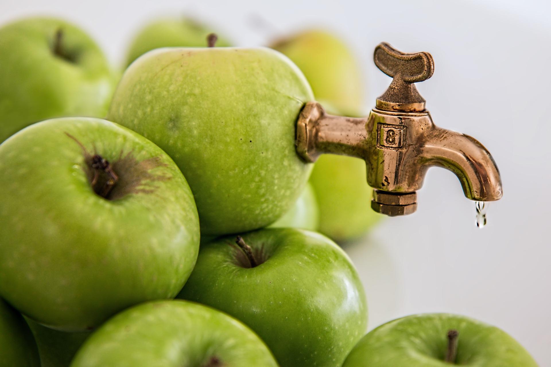 marjojen ja omenoiden mehustus mehustamossa